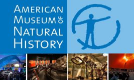 American Museum of Natural History logo and photos